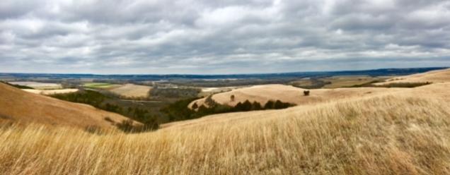 Konza Hike landscape